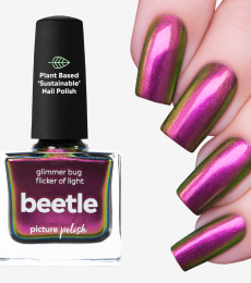 Picture Polish Beetle